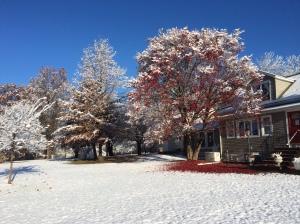 Snow 11-14-14 a
