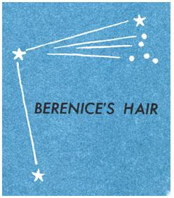 Be's Hair