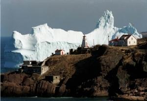 Newfie Iceberg