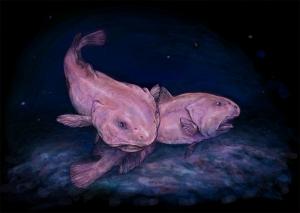 Underwater Blobfish