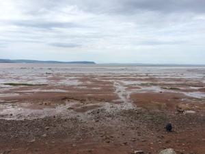 Nova Scotia Tides